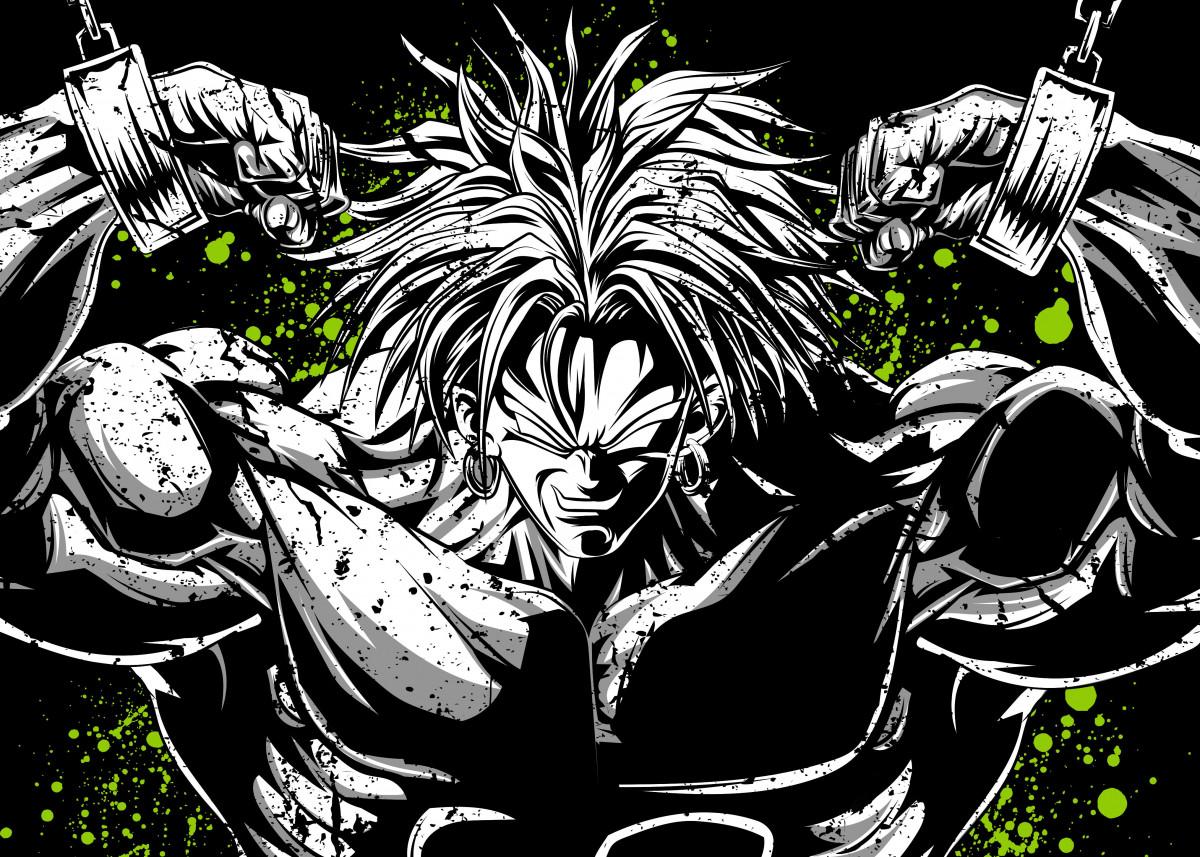Dragon Ball Z - Super Saiyan Broly 557516