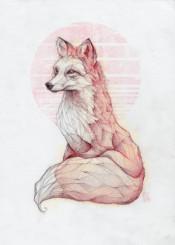 fox animal animals wild retro vintage colorful weird abstract