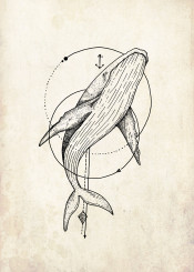 graphic wale wally whale fish ocean water nature environment tatoo cool hippster design anchor adventure travel summer circle line dots dotwork fineliner artwork
