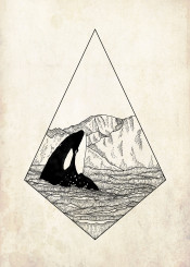 orca wale whale wally ocean wave water mountain environment nature animal graphic geometric design fineliner dotwork blackwork hippster travel travelling cool backpacker summer winter