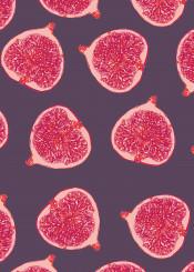 figs fruit food pattern color