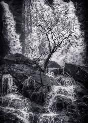 black white landscape fine photography waterfall tree silhouette rocks river water stream dark contrast textures winter greyscale martin veskilt