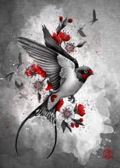 sakuras swallows wings