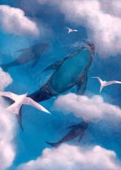 ocean sea animal birds whale seagull nature water cloud sky blue