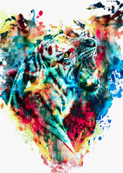 tigers big cats wild animals watercolor colorful