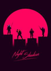 tmnt ninja turtles retro neon synthwave moon silhouette 80s