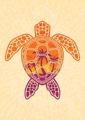turtle reptile animal palm tree sun sunset sunrise tropical island vacation