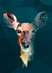 deer head animal trangle sketch minimalistic forrest geometric triangle lowpoly low poly abstract