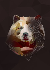 sketch bear animal head lowpoly low poly abstract triangle minimalistic geometric
