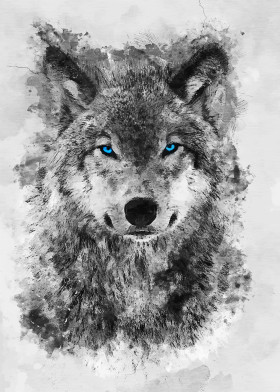 animals wolf blue eyes grey white minimal sacred fantasy
