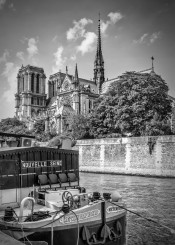 paris france europe architecture building cityscape attraction landmark sight sightseeing skyline urban cathedral notre-dame notre dame church, river, seine monochrome
