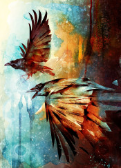 raven birds flight flying painting illustration colorful ink abstract colors nature animals crow birdart animalart fantasy