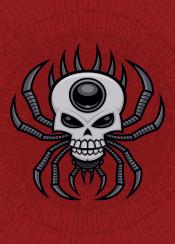 spider skull arachnid evil halloween spooky mean angry orb weaver cartoon tattoo vector creepy spiny scary