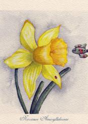 daffodil flower space watercolor spaceship