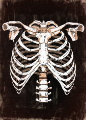 anatomy  art  bones  dead  death  halloween  human  illustration  kirk living  poster  skeleton  skeletons  skull  skulls  spock  texture  vintage  white  zombie