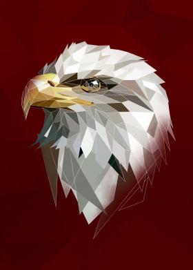 eagle x abstract x bird x head x low x lowpoly x modern x triangle x white