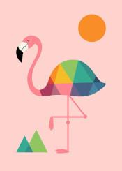 flamingo rainbow summer specail cute illustration vector graphic design geometric