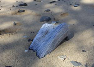 hawaii beach wood