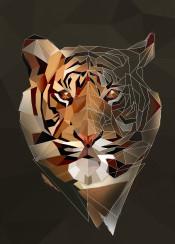 tiger head modern abstract geometric wild cat triangle bigcat eye eyes