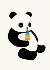 panda rainbow universe popsicle smile children illustration vector graphic design
