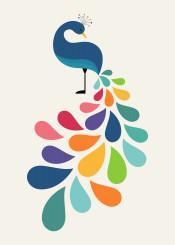 peacock rainbow dream special unique cute children illustration vector graphic design