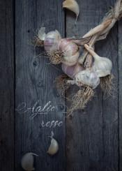 cuisine  food  foodies  garlic  healthy  ingredients  recipe  restaurant  vegetables