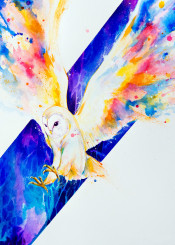wall wallart walldecor animals birds owl cute wildlife colorful color watercolor