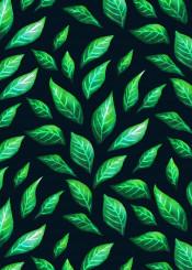 leaf green nature botanical pattern ink illustration plant floral flora decorative abstract spring fresh greenery foliage modern elegant painted drawn pretty stylish