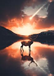 deer mountain frozen lake sun sunset star could cloud night nature animals light photography photo manipulation