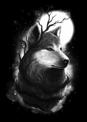 wolf animal nature moon tree stars space night midnight cool unique digital design graphic illustration painting blackandwhite