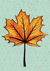 leaf nature flora floral autumn fall autumnal season seasonal plant foliage botanical illustration painting decorative pretty beautiful fun