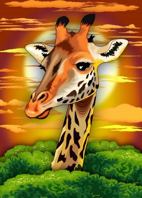 Giraffe Wild Animal