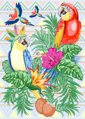 Macaw Parrots Exotic Dream