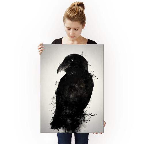raven crow bird animal prey wildlife nature outdoors mythology norse pagan viking photomanipulation spatter ink oden odin hugin munin huginn muninn Animals