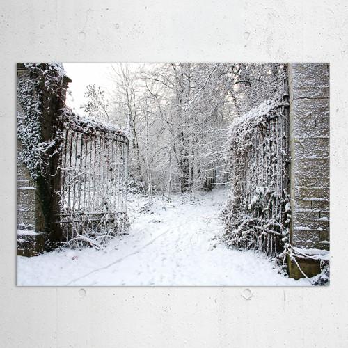 winter snow fence nature creepy white gate entrance magical Landscape