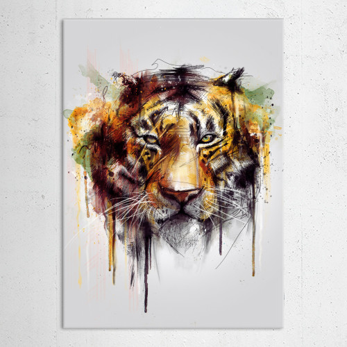 tiger cool wild Animals