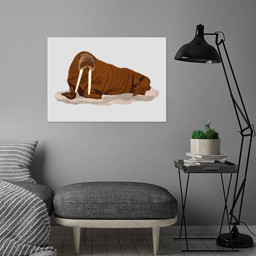 pacific walrus arctic animal northern north winter endangered Animals