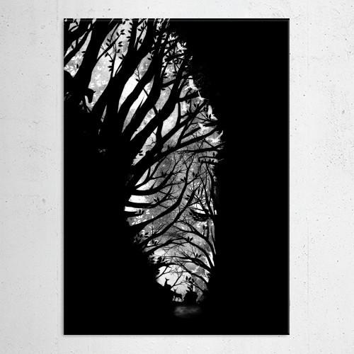animals zebra nature landscape illusion illustrations trees stars moon night magical whimsical surre Animals