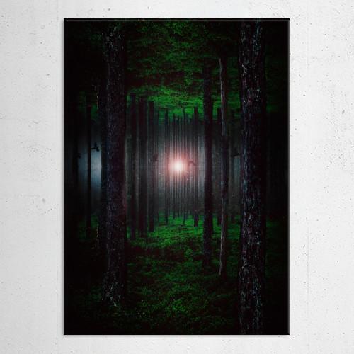 abandoned alone beams blue branch colors contrast dark dark forest dark woods darkness despair dull Landscape