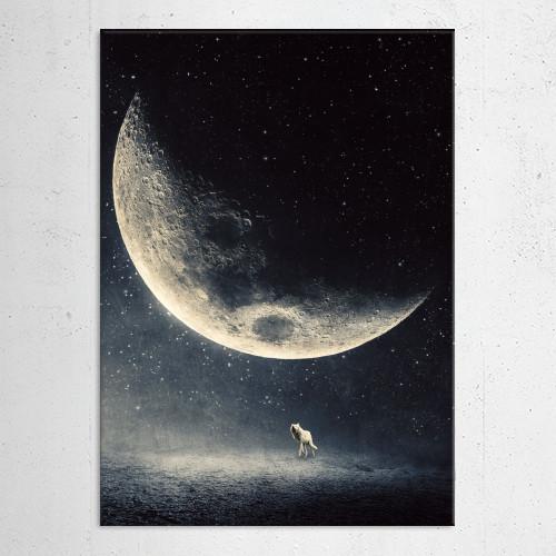moon halfmoon stars worlf night dark surreal dreamy Illustration