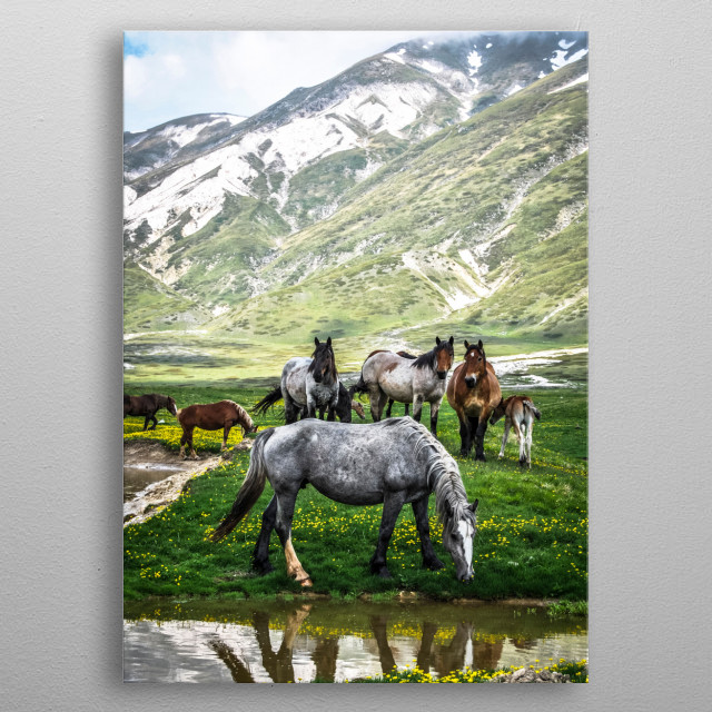 High-quality metal wall art meticulously designed by passeart would bring extraordinary style to your room. Hang it & enjoy. metal poster
