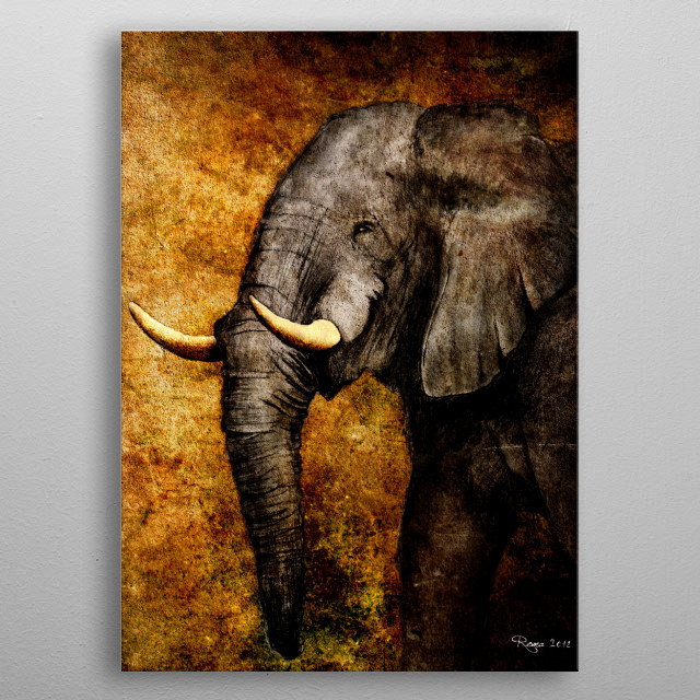 High-quality metal print from amazing The Wild collection will bring unique style to your space and will show off your personality. metal poster