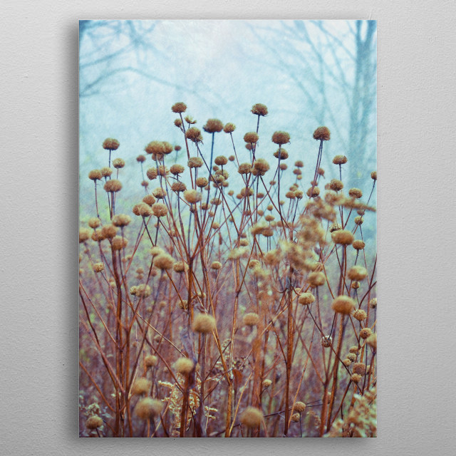 Spring Dance fog nature dreamy ethereal spring metal poster