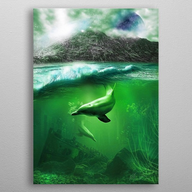Dolphin metal poster
