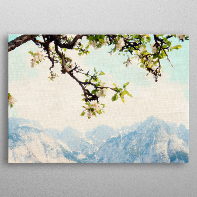 I photographed these lovely flowering apple blossoms with snow-capped mountains in Werfen, Austria. The photo has a soft, gauzy glow. metal poster
