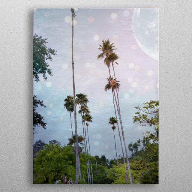 Palm Land metal poster