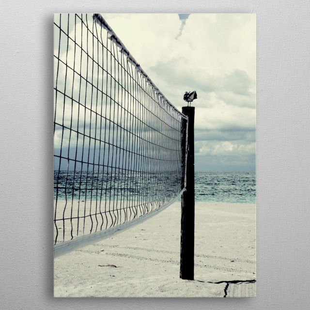 Beach Ball Bird metal poster