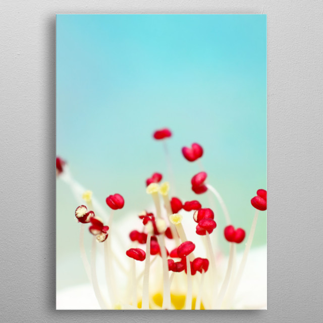 Blooming Candy Red metal poster