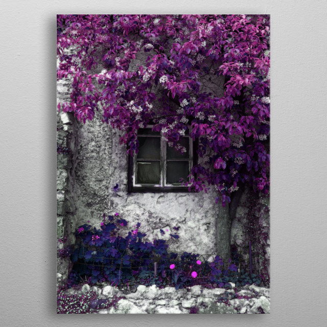 Orchid Vines metal poster