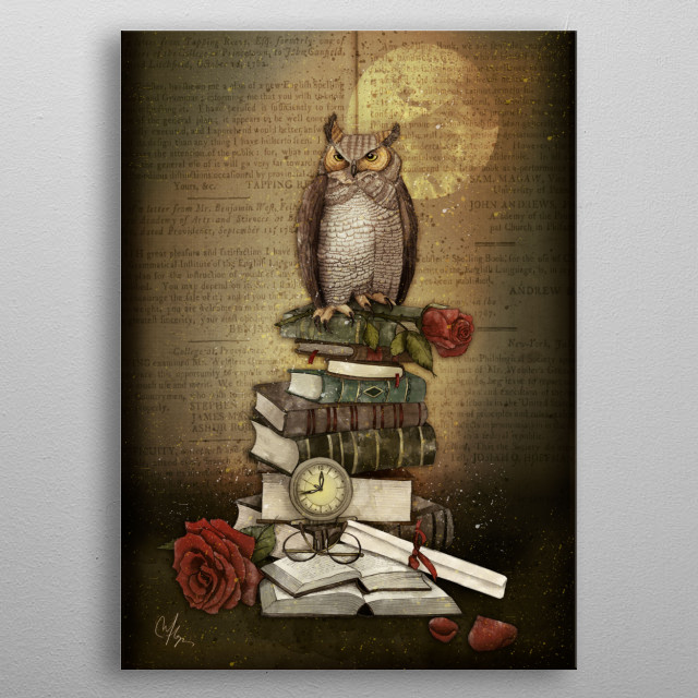 The Bibliophile - (the lover of books) metal poster